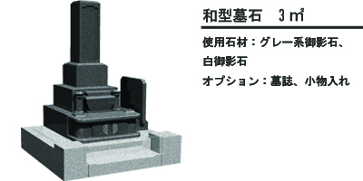和型 5のコピー