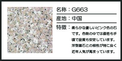 g663のコピー